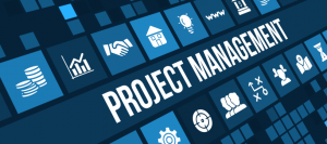 How Business Structures Affect Projects and Project Management Software